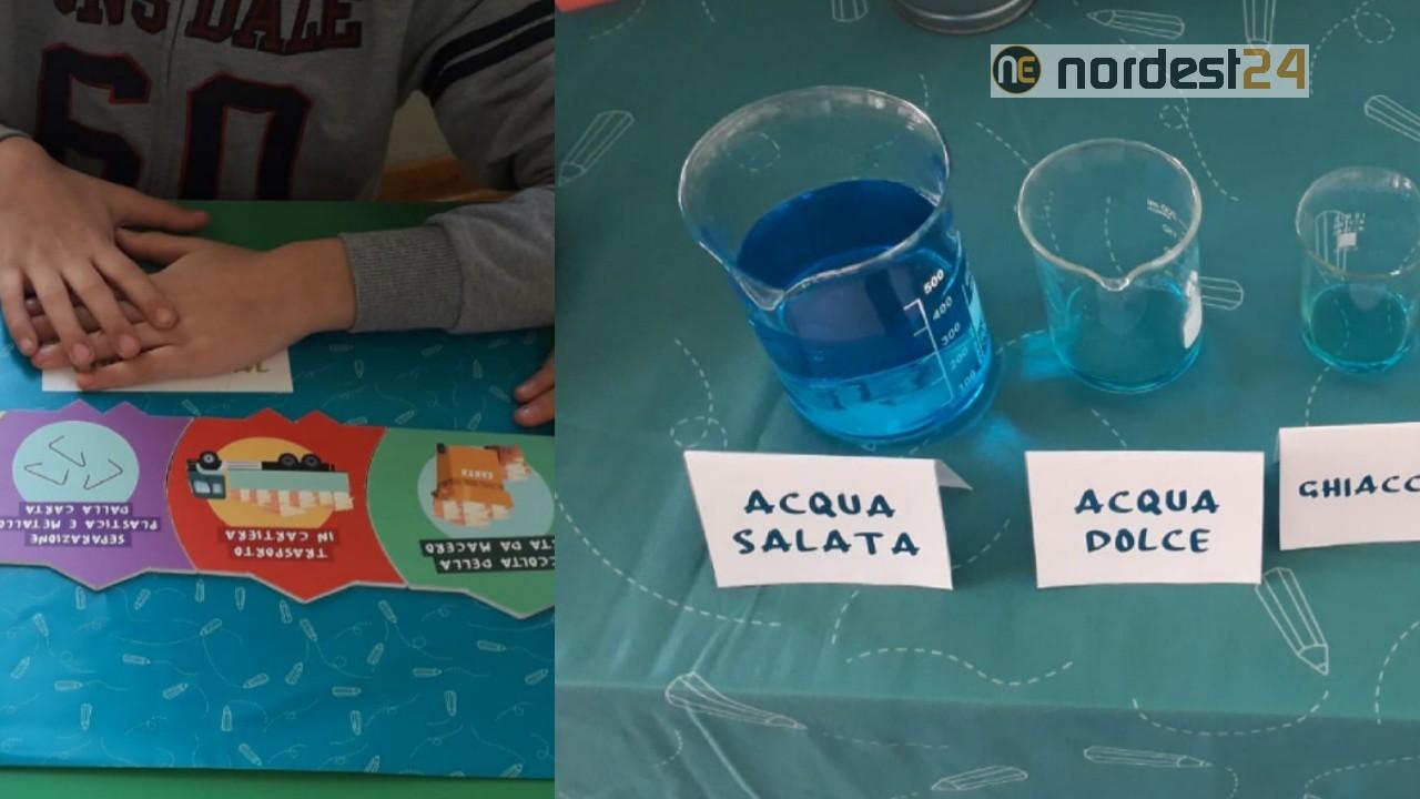 Quiz Ecologia Per Bambini a trieste i bambini scoprono l'ecologia sui banchi di scuola